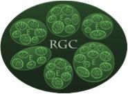 RGCgrow4